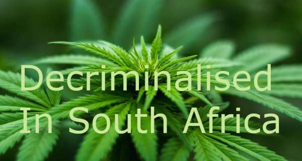 Cannabis Decriminalised in South Africa